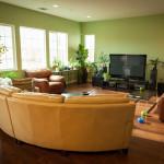 Grønne væg til TV stue
